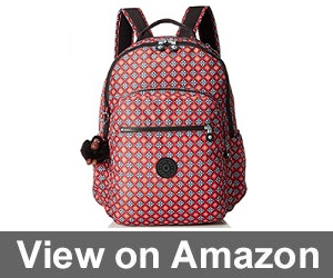 Seoul go by Kipling for Laptop review
